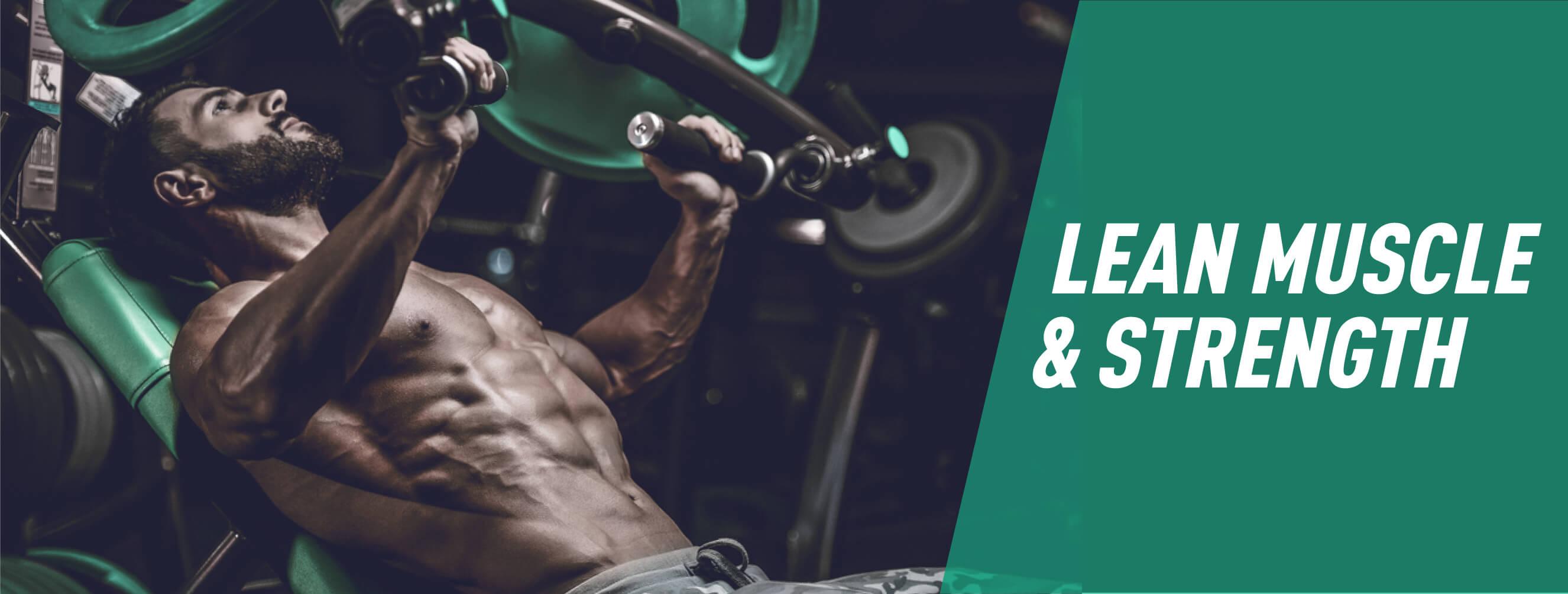 Lean Muscle & Strength - Online Programme